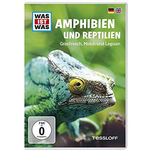 - WAS IST WAS TV DVD: Amphibien und Reptilien - Preis vom 10.05.2021 04:48:42 h