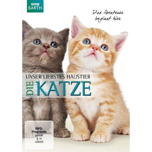 Yvonne Ellis - Unser liebstes Haustier - Die Katze - Preis vom 25.01.2021 05:57:21 h