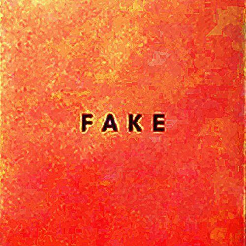 die Nerven - Fake - Preis vom 31.07.2021 04:48:47 h