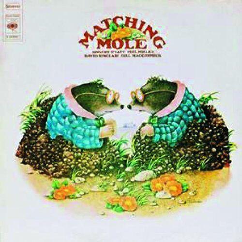 Matching Mole - Preis vom 19.06.2021 04:48:54 h