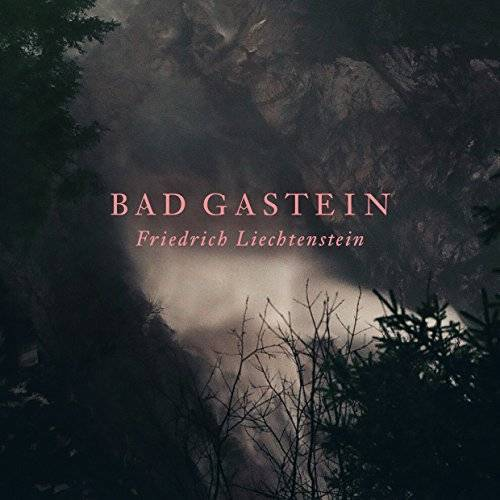 Friedrich Liechtenstein - Bad Gastein - Preis vom 16.06.2021 04:47:02 h
