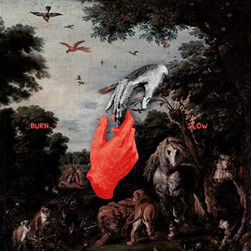 Chris Liebing - Burn Slow (2lp+Mp3) [Vinyl LP] - Preis vom 26.07.2021 04:48:14 h