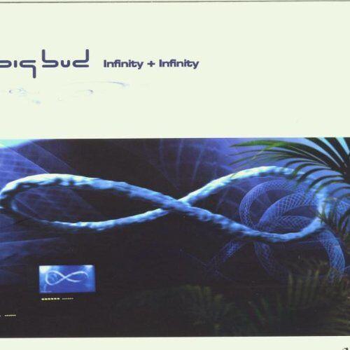 Big Bud - Infinity+Infinity - Preis vom 16.10.2021 04:56:05 h