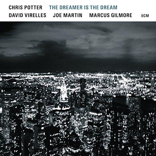 Potter - The Dreamer Is The Dream - Preis vom 16.10.2021 04:56:05 h