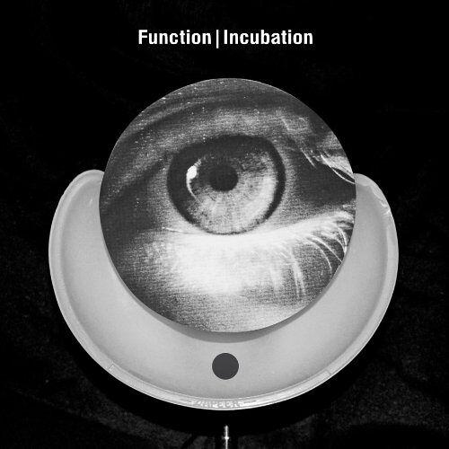 Function - Incubation - Preis vom 22.06.2021 04:48:15 h