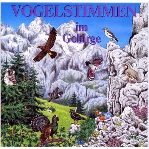 Dingler, Karl H - Vogelstimmen-Serie, Ed. 7: Vogelstimmen im Gebirge (1 Audio-CD) - Preis vom 17.04.2021 04:51:59 h