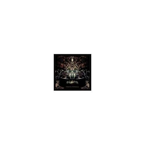 Various - Didjeridoo Meditations - Preis vom 17.04.2021 04:51:59 h