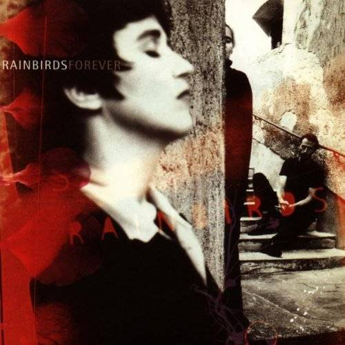 Rainbirds - Forever - Preis vom 20.02.2020 05:58:33 h