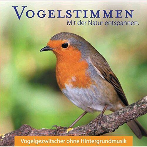Vogel - Vogelstimmen - Vogelgezwitscher ohne Hintergrundmusik - Preis vom 07.03.2021 06:00:26 h