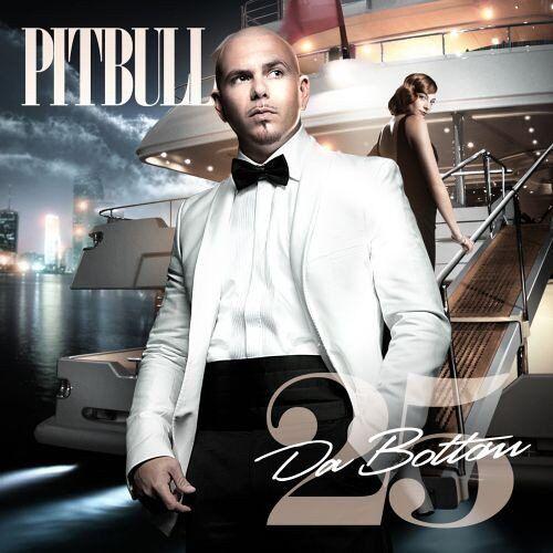 Pitbull - Da Bottom 25 - Preis vom 14.01.2021 05:56:14 h