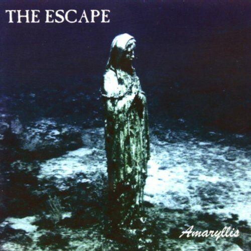 the Escape - Amaryllis - Preis vom 21.04.2021 04:48:01 h