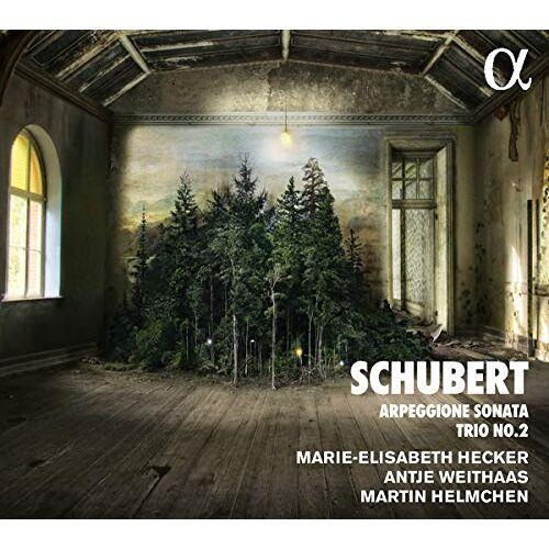 a. Weithaas - Klaviertrio d.929/Arpeggione d.821 - Preis vom 17.10.2020 04:55:46 h