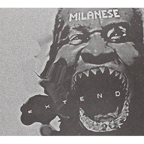 Milanese - Extend - Preis vom 20.10.2020 04:55:35 h