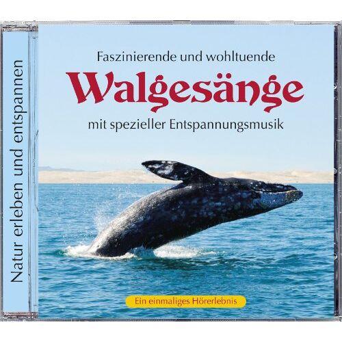 Naturgeräusche - Naturgeräusche: Walgesänge mit spezieller Entspannungmusik, Naturgeräusche Walgesang - Preis vom 23.01.2021 06:00:26 h