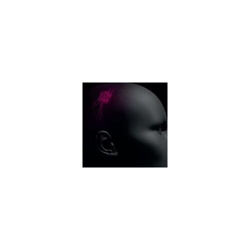 Winona - Rosebud - Preis vom 28.02.2021 06:03:40 h