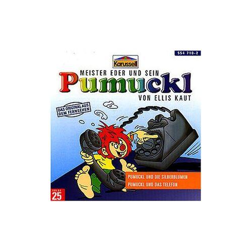 Pumuckl - 25:Pumuckl und die Silberblumen/Pumuckl und das Te - Preis vom 12.05.2021 04:50:50 h