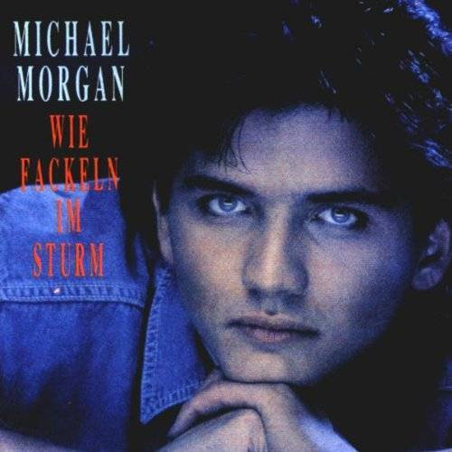 Michael Morgan - Wie Fackeln im Sturm - Preis vom 11.11.2019 06:01:23 h
