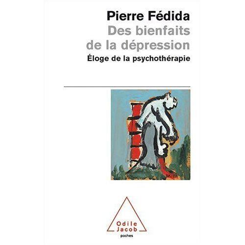 Pierre Fédida - Des bienfaits de la dépression : Eloge de la psychothérapie - Preis vom 30.07.2021 04:46:10 h