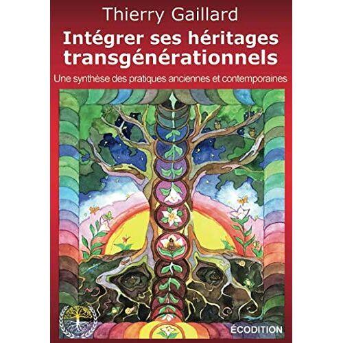 Thierry Gaillard - Intégrer ses héritages transgénérationnels - Preis vom 20.06.2021 04:47:58 h