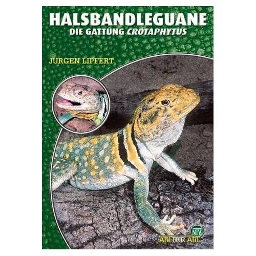 Jürgen Lipfert - Halsbandleguane. Crotaphytus collaris, C. bicinctores - Preis vom 17.05.2021 04:44:08 h
