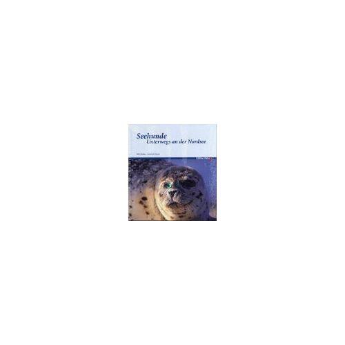 Willi Rolfes - Seehunde. Unterwegs an der Nordsee - Preis vom 15.10.2021 04:56:39 h