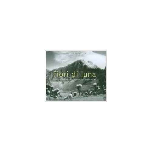 - Ecuador. The secret art of Precolumbian Ecuador. Ediz. spagnola - Preis vom 16.06.2021 04:47:02 h