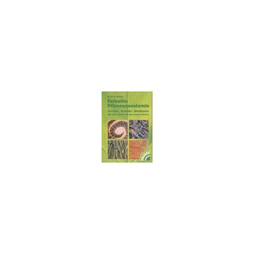 Bowes, Bryan G. - Farbatlas Pflanzenanatomie - Preis vom 11.06.2021 04:46:58 h