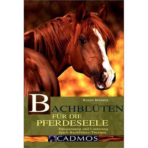 Marion Brehmer - Bachblüten für die Pferdeseele: Entspannung und Linderung durch Bachblüten-Therapie - Preis vom 19.06.2021 04:48:54 h