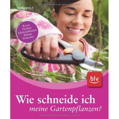 Rosa Wolf - Wie schneide ich meine Gartenpflanzen?: Rosen, Hecken, Kletterpflanzen, Bäume, Sträucher - Preis vom 11.06.2021 04:46:58 h