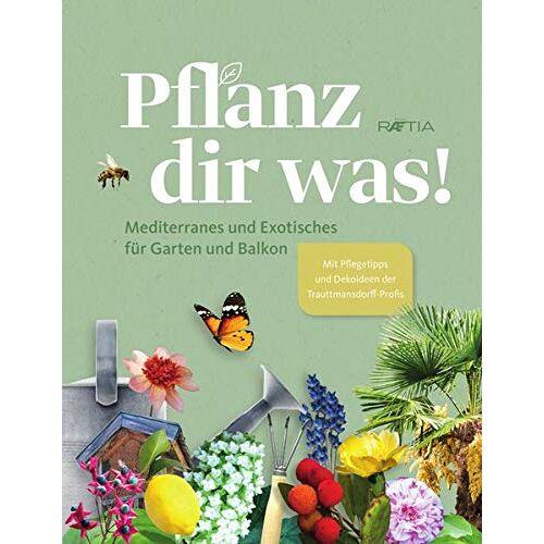 Die Gärten von Schloss Trauttmansdorff - Pflanz dir was! Mediterranes und Exotisches für Garten und Balkon. Mit Pflegetipps, Dekoideen und Rezepten - Preis vom 22.06.2021 04:48:15 h