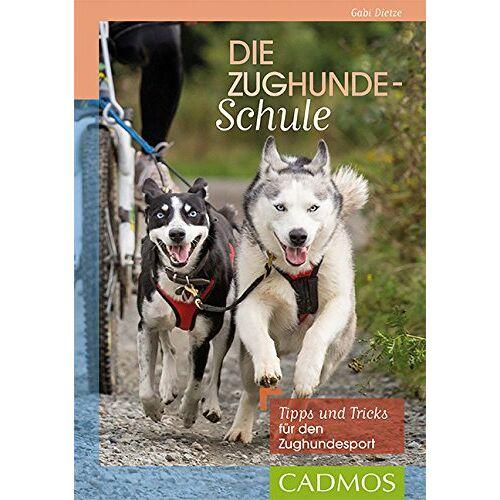 Gabi Dietze - Die Zughundeschule: Tipps und Tricks für den Zughundesport - Preis vom 09.09.2021 04:54:33 h