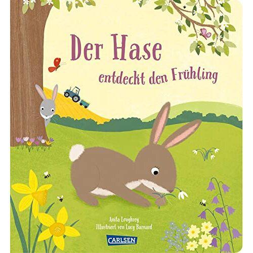 Anita Loughrey - Der Hase entdeckt den Frühling - Preis vom 21.06.2021 04:48:19 h