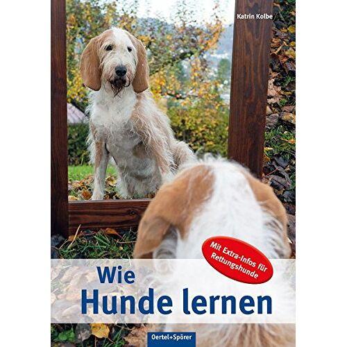 Katrin Kolbe - Wie Hunde lernen: Mit Extra-Infos für Rettungshunde - Preis vom 22.07.2021 04:48:11 h