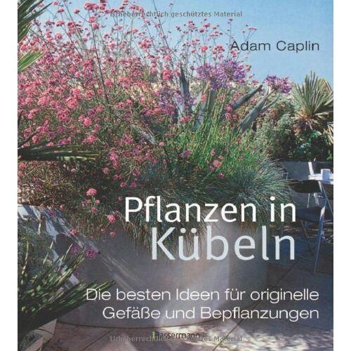 Adam Caplin - Pflanzen in Kübeln: Die besten Ideen für originelle Gefäße und Bepflanzungen - Preis vom 21.06.2021 04:48:19 h