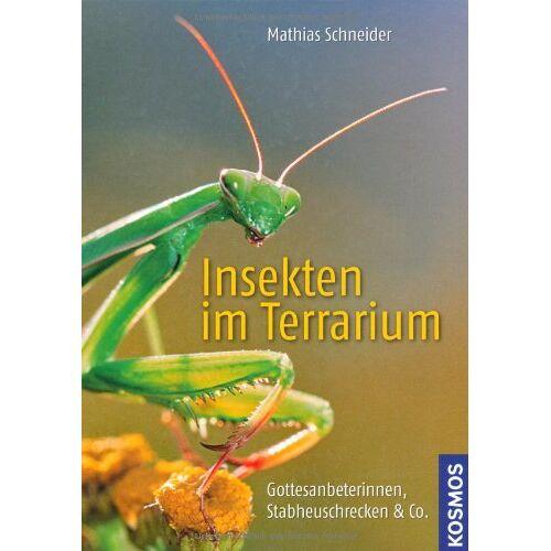 Mathias Schneider - Insekten im Terrarium: Gottesanbeterinnen, Stabheuschrecken & Co. - Preis vom 13.06.2021 04:45:58 h