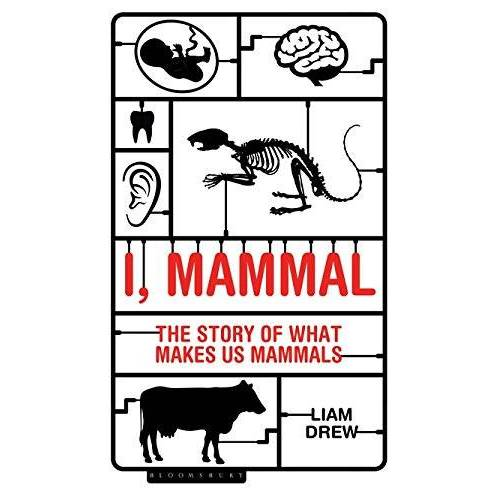 Liam Drew - I, Mammal: The Story of What Makes Us Mammals - Preis vom 16.06.2021 04:47:02 h