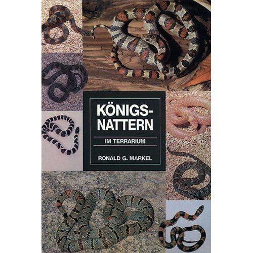 Markel, Ronald G. - Königsnattern im Terrarium - Preis vom 16.05.2021 04:43:40 h
