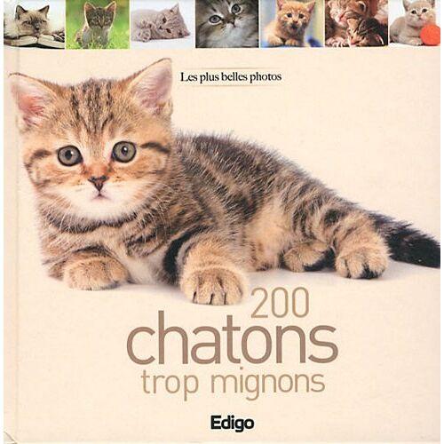 Edigo - 200 chatons trop mignons - Preis vom 19.06.2021 04:48:54 h