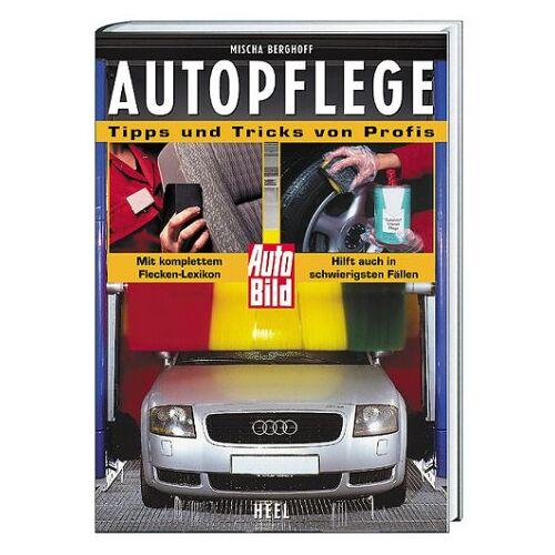 Mischa Berghoff - Autopflege, Tipps und Tricks von Profis - Preis vom 18.06.2021 04:47:54 h