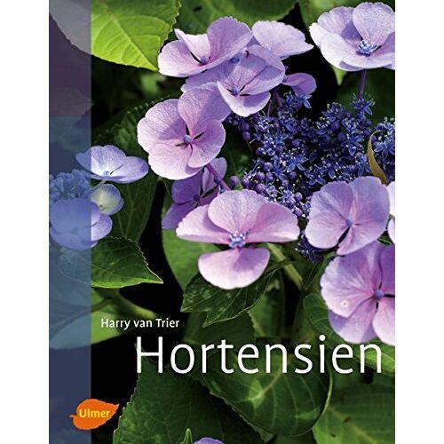 Trier, Harry van - Hortensien - Preis vom 19.09.2021 04:53:15 h