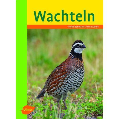 Friedel Bernhardt - Wachteln - Preis vom 11.06.2021 04:46:58 h