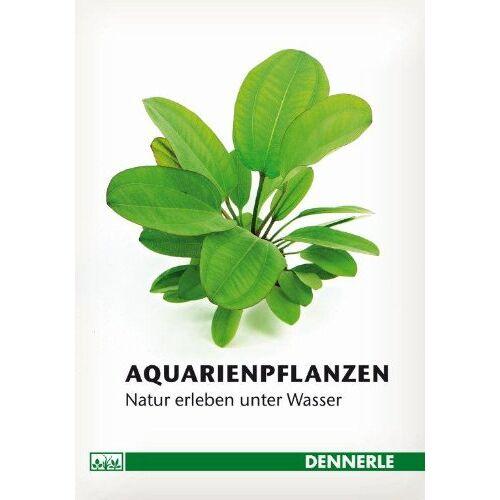 Stefan Hummel - Aquarienpflanzen: Natur erleben unter Wasser - Preis vom 14.06.2021 04:47:09 h