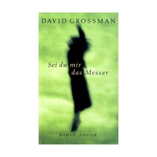David Grossman - Sei du mir das Messer: Roman - Preis vom 22.06.2021 04:48:15 h