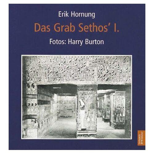 Erik Hornung - Das Grab Sethos I - Preis vom 16.06.2021 04:47:02 h