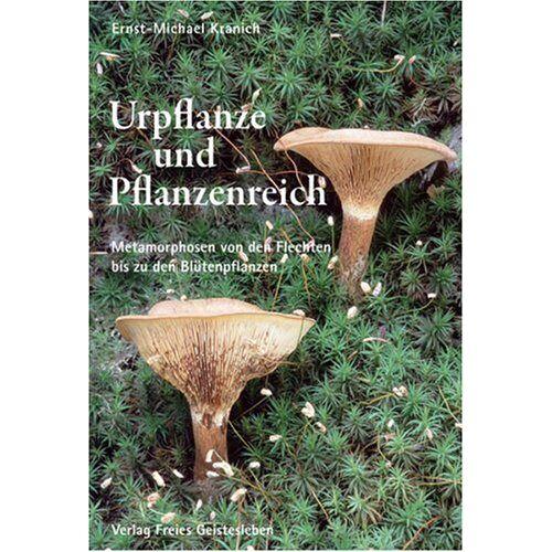 Kranich, Ernst M - Urpflanze und Pflanzenreich: Metarmorphosen von den Flechten bis zu den Blütenpflanzen - Preis vom 17.05.2021 04:44:08 h