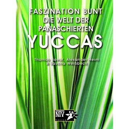 Thomas Boeuf - Faszination bunt - Die Welt der panaschierten Yuccas (NTV Garten) - Preis vom 19.06.2021 04:48:54 h