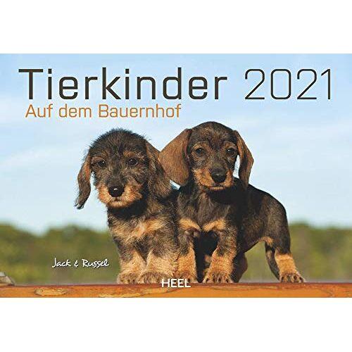 - Tierkinder auf dem Bauernhof 2021: Süße Tierbabys vom Land - Preis vom 23.09.2021 04:56:55 h
