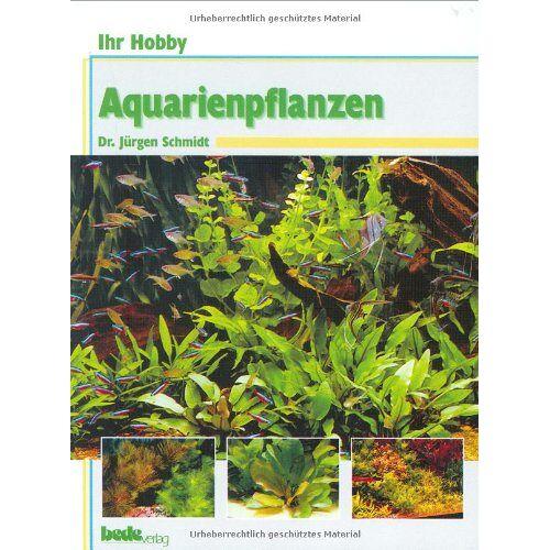 Jürgen Schmidt - Ihr Hobby: Aquarienpflanzen - Preis vom 16.06.2021 04:47:02 h