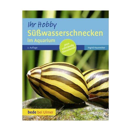 Ingrid Haunreiter - Süßwasserschnecken im Aquarium - Preis vom 16.06.2021 04:47:02 h