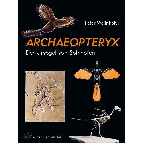 Peter Wellnhofer - Archaeopteryx: Der Urvogel von Solnhofen - Preis vom 20.06.2021 04:47:58 h